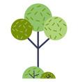green tree cartoo flat for web vector image