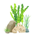 green vegetation of deep sea vector image vector image