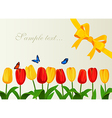 greeting card with spring tulips and yellow bow vector image vector image