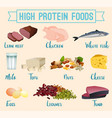 high protein foods set vector image