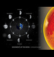 movements moon 8 lunar phases realistic vector image