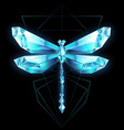 polygonal dragonfly vector image