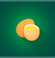 isometric chicken eggs vector image