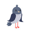 pigeon cartoon bird icon vector image