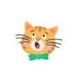 snout cat in bow isolated kitten head portrait vector image vector image