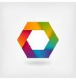 abstract rainbow hexagon vector image