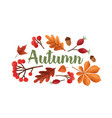 autumn lettering handwritten with beautiful vector image vector image
