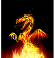 Dragon fire on background vector image
