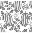hand drawn sketch style carambola seamless vector image vector image