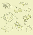 set hand-drawn vegetables organic healthy vector image vector image