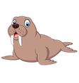 Cartoon walrus vector image vector image