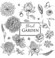floral garden collection vector image vector image