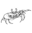 hand drawn line art crab vector image