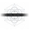 metatron outline seed of life sacred geometry vector image vector image