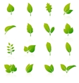 set green leaf icons on white background vector image vector image