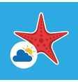 summer vacation design starfish icon vector image vector image
