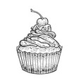cake bakery product sketch engraving vector image vector image