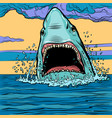 dangerous aggressive shark in ocean vector image vector image