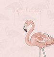 FlamingoAkva7 vector image vector image