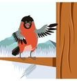 happy bullfinch on tree winter flat background vector image vector image