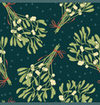 mistletoe seamless pattern retro style vector image