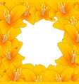 orange lily border2 vector image vector image