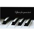 realistic piano keys vector image vector image