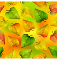 Seamless background colorful autumn leaves vector image vector image
