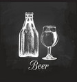 hand sketched craft beer bottle and glass vector image
