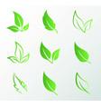 green leaf logo set vector image vector image