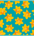 orange lily on green teal background vector image