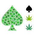spades suit collage of cannabis vector image vector image