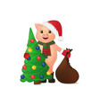 cute piggy in santa hat christmas tree and gift vector image