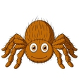 Cute tarantula spider cartoon vector image vector image