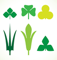 Decorative green leaves pattern set isolated on vector image vector image