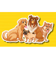 Four different type of dogs vector image vector image