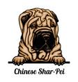 head - dog breed color image vector image vector image