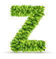 Letter Z alphabet of green leaves vector image