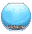 round glass aquarium vector image