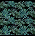 seamless pattern with tropical leaves on black vector image