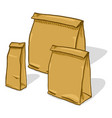 set brown craft paper bags for grossery vector image vector image