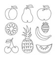 set fruits icon vector image
