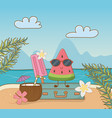 tropical watermelon character on beach scene vector image