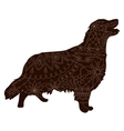 Chocolate Retriver vector image vector image