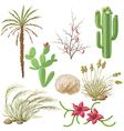 desert plants vector image