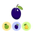 Fruit Icons Plum Apple Pear vector image vector image