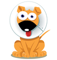 Funny Dog with Elizabethan Collar vector image vector image