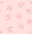pink rose - rosa on pink background vector image vector image