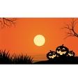 pumpkins and fullmoon halloween orange backgrounds vector image vector image