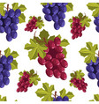 ripe grapes bunches vegetarian fruits seamless vector image vector image